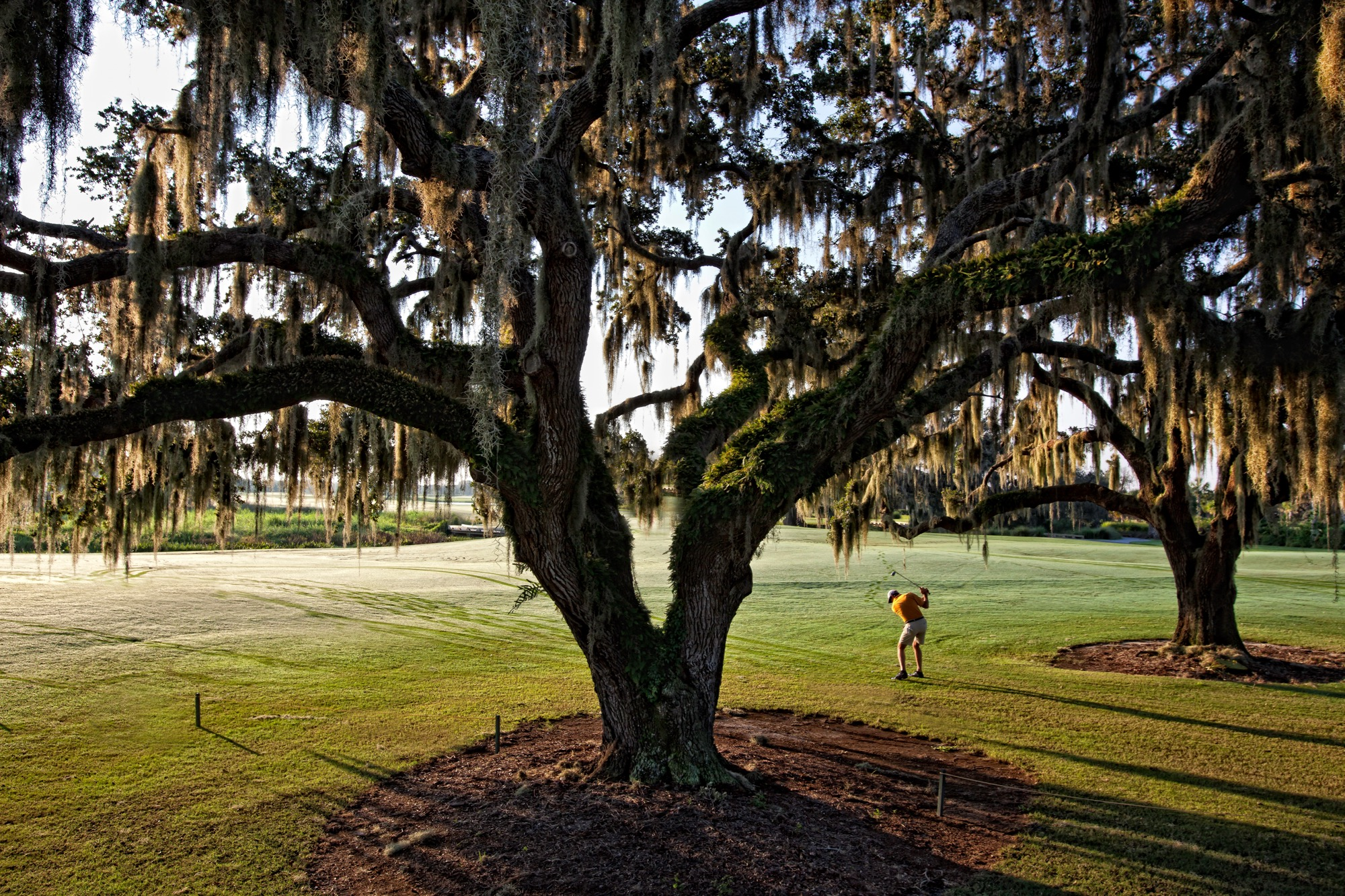 Golfing - The Founders Club